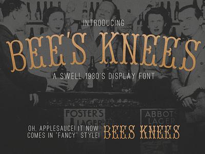 Bee's Knees - Display Font typeface displayfont artdeco fonts vintage resources font