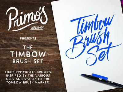 Timbow Brush Set for Procreate brushes tombow brushlettering procreate