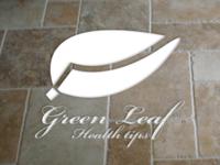 Leafite - Leaf Logo Template