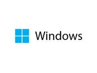 Unofficial Windows Logo