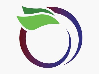 Plumdribbble plum icon illustration logo