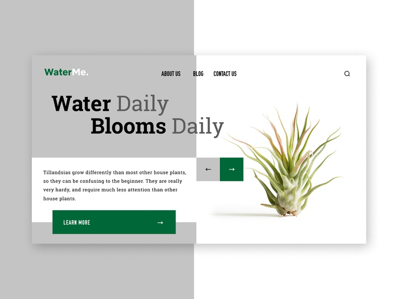 WaterMe User Interface
