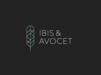 Ibis & Avocet