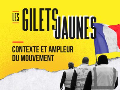 Gilets Jaunes Infographic politics french france photography illustration
