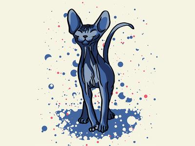 Happy Sphynx Kitten