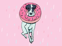 Iggy Dog Wearing a Doughnut
