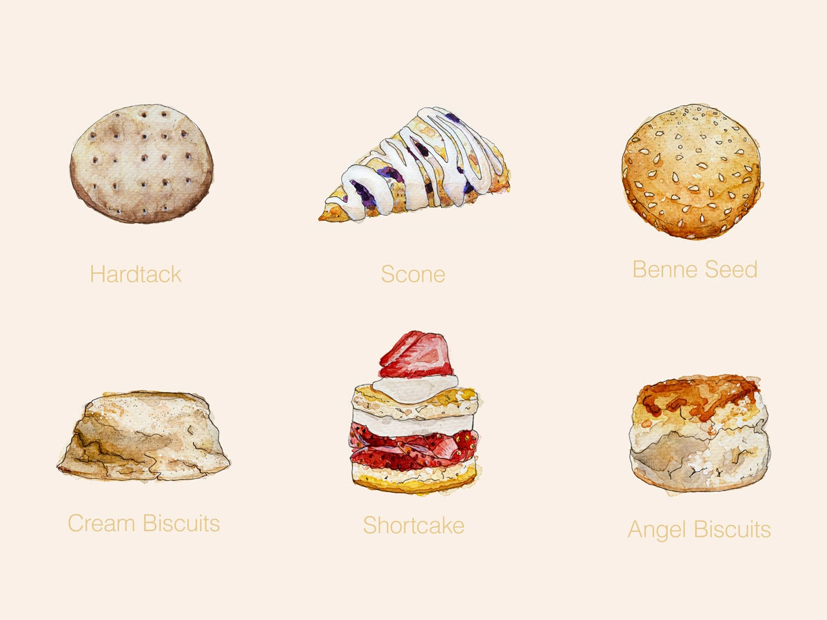 Biscuits - Watercolour Illustrations food illustration illustration watercolor hardtack sesame benne seed angel shortcake scone cookie biscuit cookies biscuits