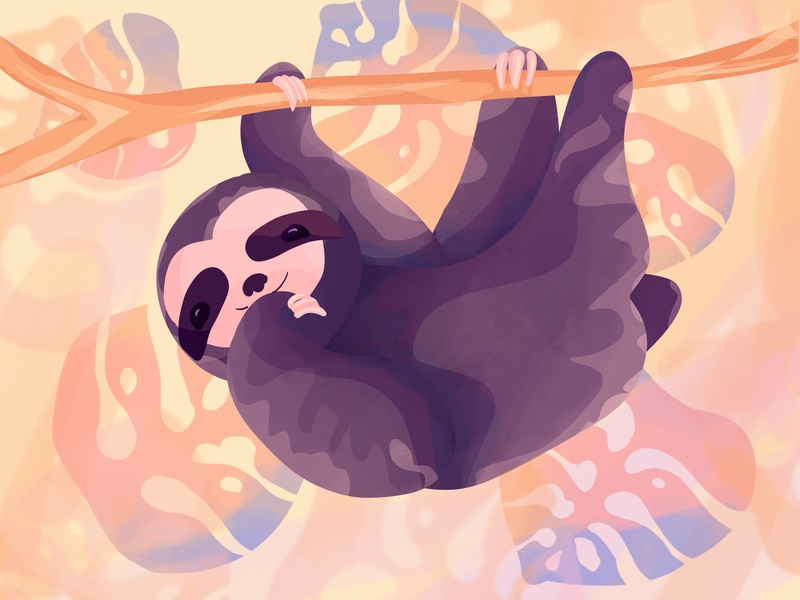 Happy sloth hanging off a branch animal illustration adorable monstera animal art happy colorful animal sloths procreate digital illustration sloth