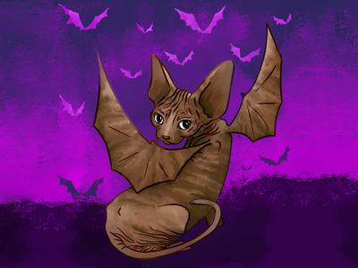 Sphynx kitten with bat wings