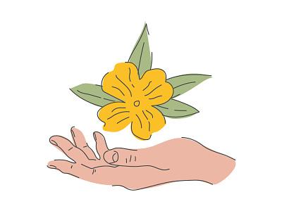 Primrose hands leaves flower hand primrose