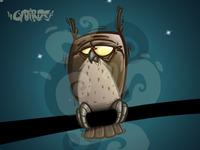Owl night long