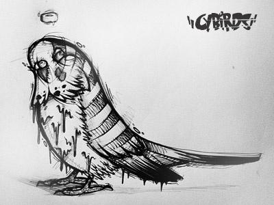 Cybudgie budgie vector illustration character cybe cybirds illustrator