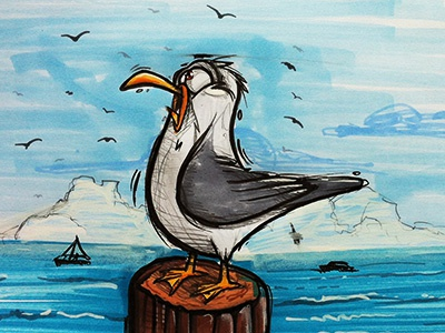 Seagull seagull cybe cybirds illustration character bird sketch