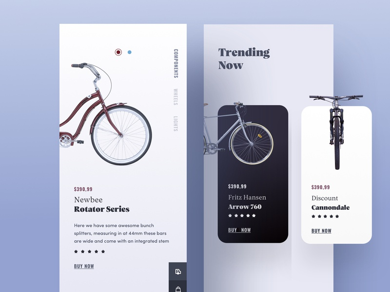 Product Description Page - Part 1 ios app bike card web design clean ux ux  ui identity e commerce shop ecommerce cart