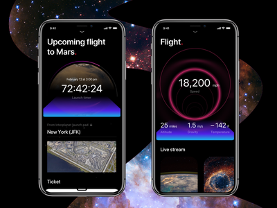 Flight stages musk elon interplanetary travel booking speed flight app mobile spacedchallenge