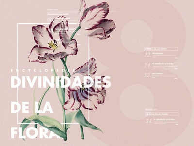 Flowers Encyclopedia flowers pink fashion story print design collection stripes book magazine editorial