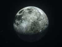 Moonwalker #1