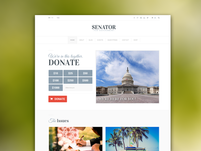 Senator Homepage 1 minimal ux web flat icons website clean red political interface layout ui