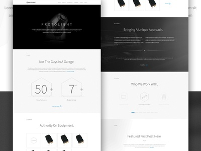 Protolight Concept  design elegant seagulls clean steeze graphic concept web minimal lighting greyscale