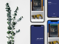 Blog App Showcase