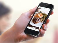 iOS Camera Interface