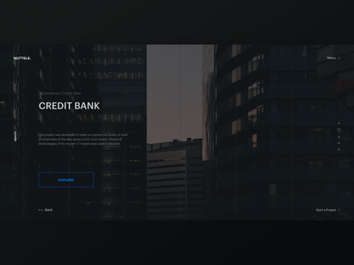 NUTTELE - project page photo slider it company ux dark ui banking awards ui  ux design
