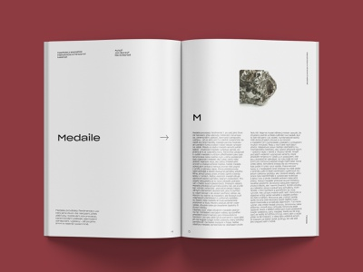 The National Museum History Evolution Catalogue Cover #2 brochure design layouts catalog design layout design clean print magazine print book page brochure catalogue layout minimalism minimal corporate identity identity type typography branding design