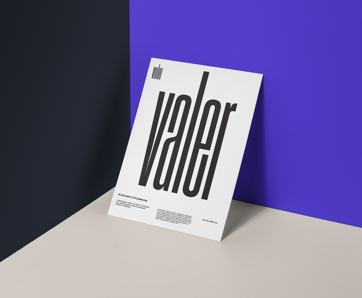 Valer Brand digital layout poster mock up vector print flat logo minimal minimalism type identity corporate identity typography branding design