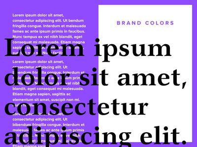 Brand Colors bold serif purple branding color typography