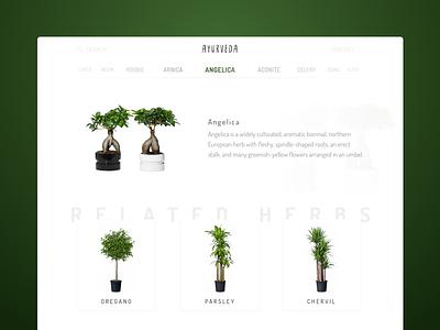 Ayurveda plants shadow cards ui home minimalistic clean