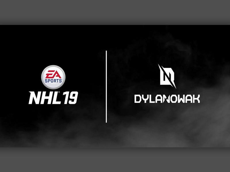 EA NHL 19 - 30 Create-A-Team Logos by Dylan Nowak on Dribbble