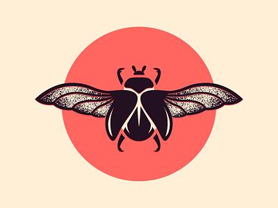Beetle illustration bug beetle
