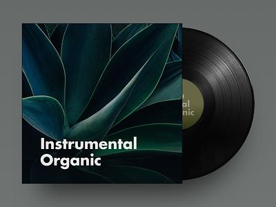 Instrumental Organic spotify playlist album cover music