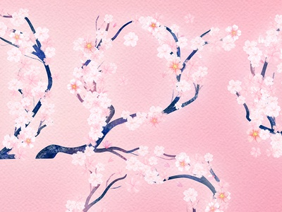 🌸🌸🌸🌸 cherry cherry blossom pink typography type tree flower dc japan spring blossom