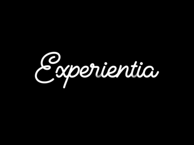 Logo Design for Experientia illustration design logo type