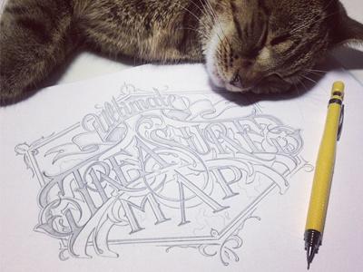 Treasure schmetzer treasure pencil sketch sleeping cat colleague