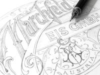 Marchfeld sketch