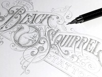 Black Squirrel sketch