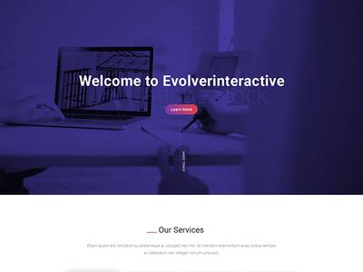 Evolver Interactive