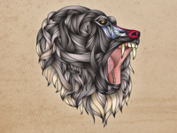 Baboon Illustration