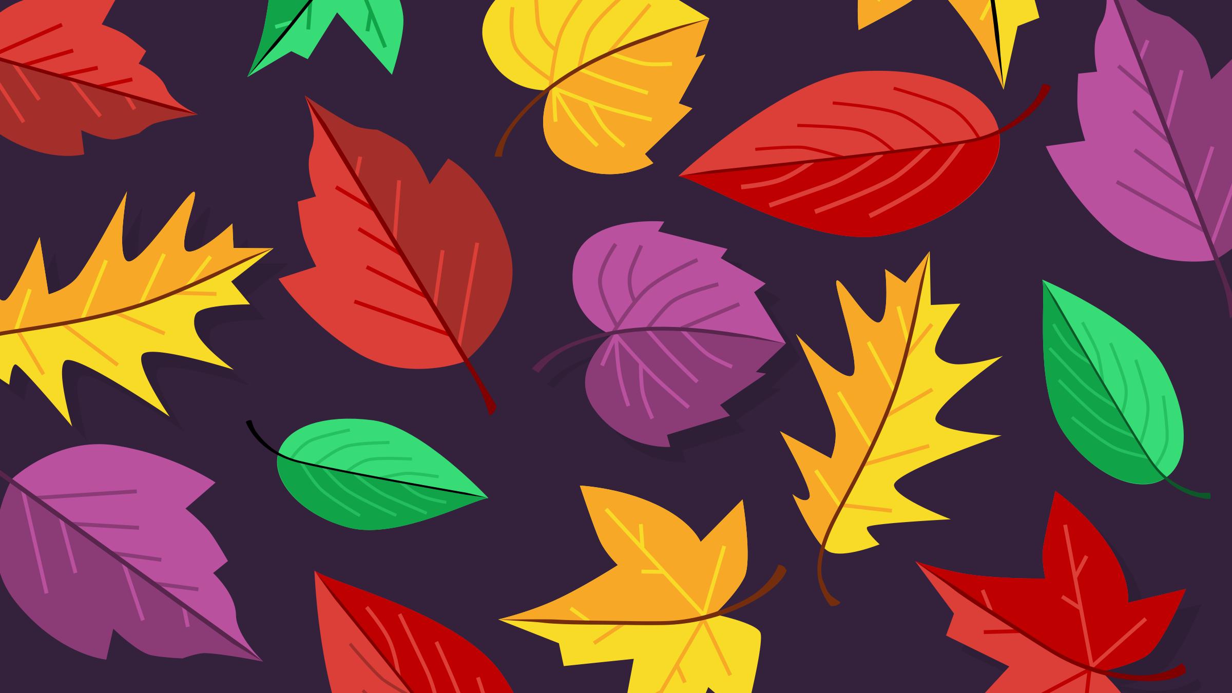 Season   fall   leaves