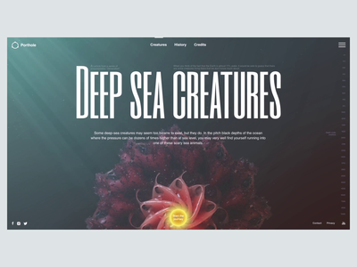 Deep Sea Creatures underwater ux ui sea nature learning landing journal interactive graphic encyclopedia design c4d after effects web design animation 3d