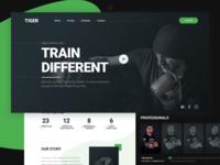 "Website design — Fight club ""TIGER"""