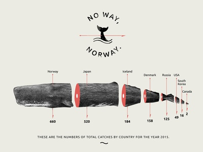 chitchart / Whale hunting typography typo tillnoon norway hunting whale chart infographic