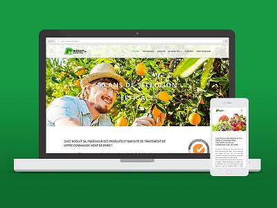 Roduit SA webdesign wordpress