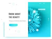 Flower UI
