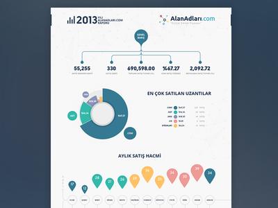 infographic (2013)