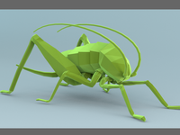 Low Poly Cricket