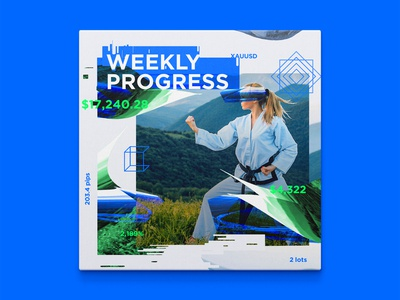 Weekly progress #1