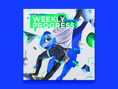 Weekly progress #3